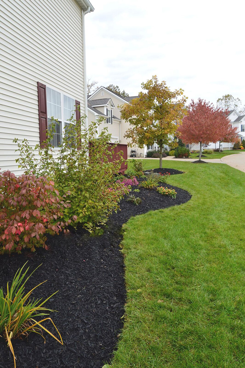 mulch and landscaping by allscapes