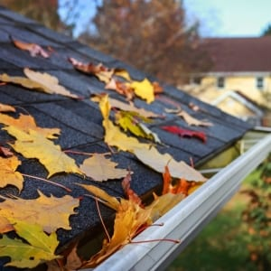 fall clean up services leaves on roof
